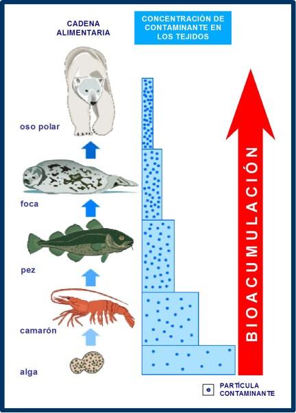 contaminación 4